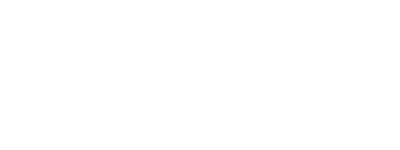 Bonthrone Security Services Mobile Retina Logo